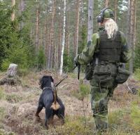 patrull