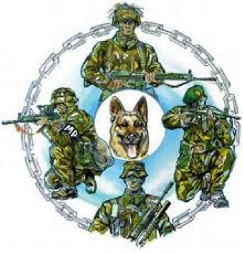 dm_patrullhund