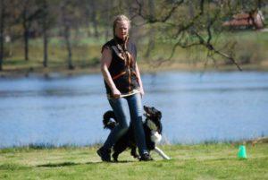 Suzy Tvärnstedt med Vallhunden Jo, Tyresö BK, har tackat nej på grund av skada.