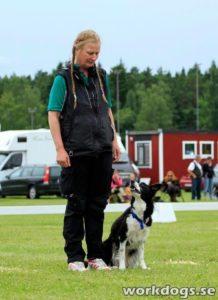 Suzy Tvärnstedt med Easy Working Ayasha, Tyresö BK