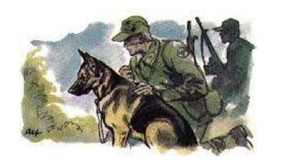 Prova på patrullhund